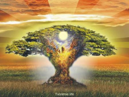 Духи в сознании человека