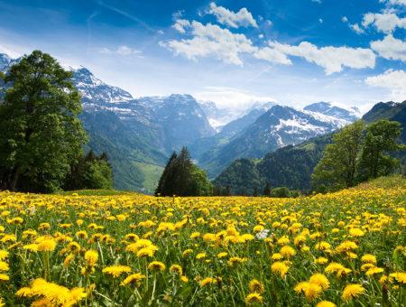 О начинающих контактёрах, медитациях, развитии и единстве